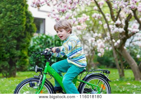 Little preschool kid boy riding with his first bike