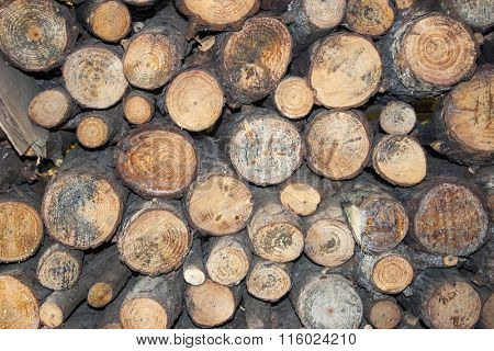 Firewood background front view
