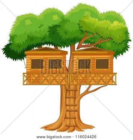 Two treehouses in the tree illustration