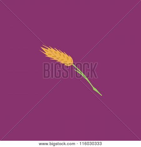 Spica flat icon