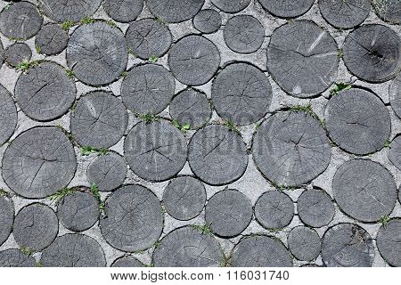 Background Of Pathway Of Sawed Logs And Concrete