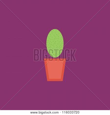 cactus pot flat icon