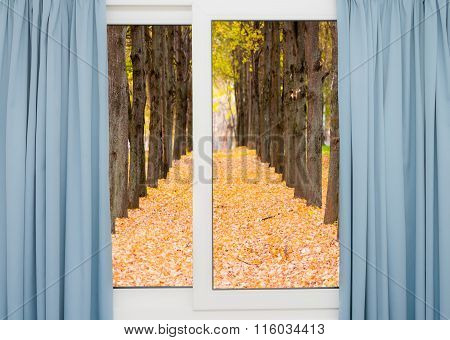 View From The Window On The Road And Autumn Landscape