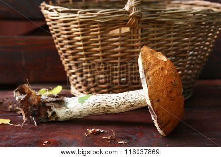 Aspen Red Cap Mushroom Beside The Wicker Basket