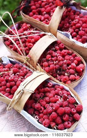 Baskets With Ripe Red Raspberries