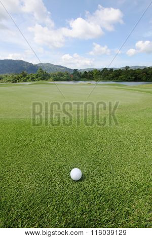 Golfball on grass of golf course at sunny day