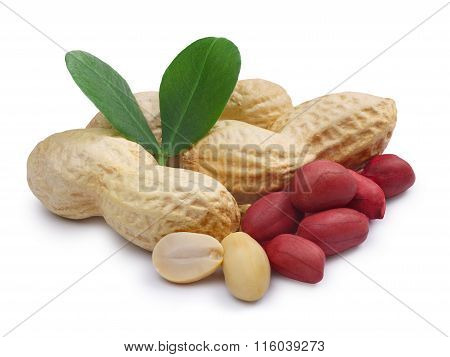 Peanuts Isolated With Clipping Paths