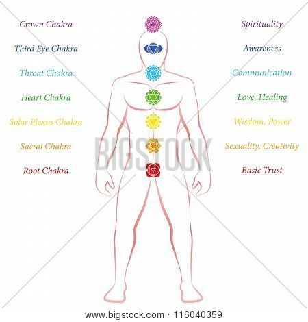 Chakras Meanings Man Standing Upright Frontal