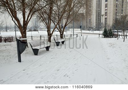 Benches On The Lane In Winter
