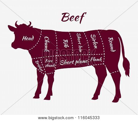 Scheme of Beef Cuts for Steak and Roast