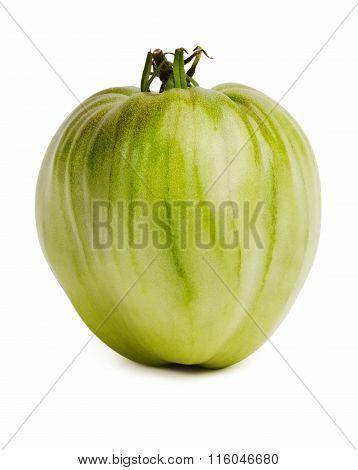 Large Unripe Tomatoes