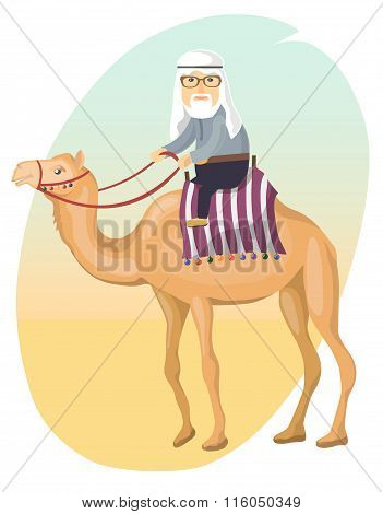 Bedouin on a camel