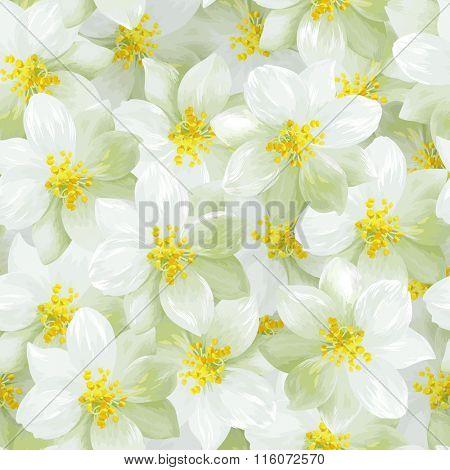 Seamless pattern of white jasmine flowers