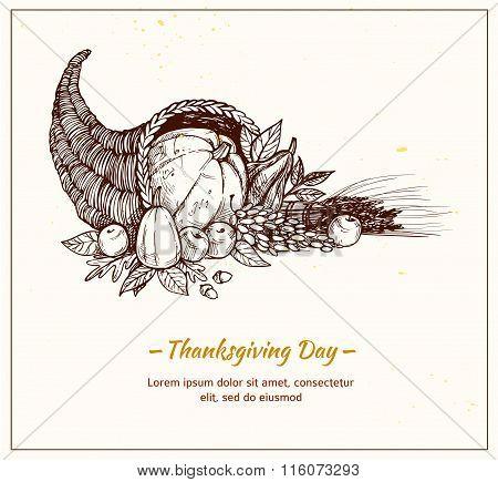 Rawn Vector Illustration - Thanksgiving Day. Cornucopia