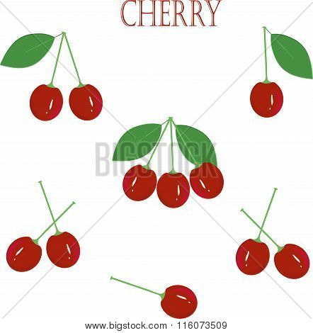 Red cherry, green roots. leaves, on white background, hand drawing