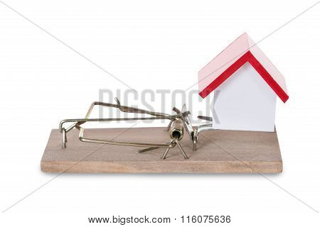 Closeup Of House Model On Mousetrap