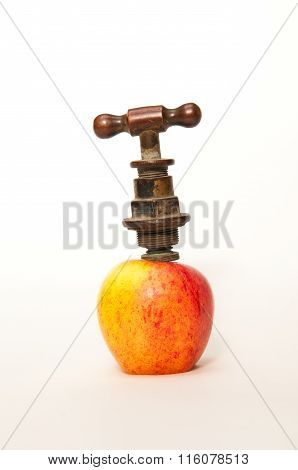 Old style tap in an apple
