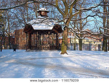 Winter arbor.