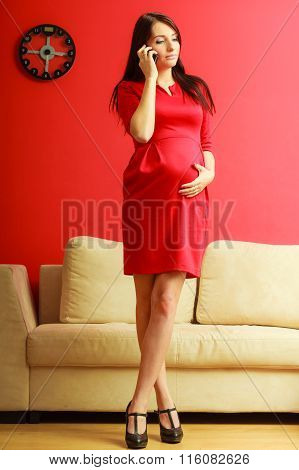 Stylish Pregnant Woman In Red.