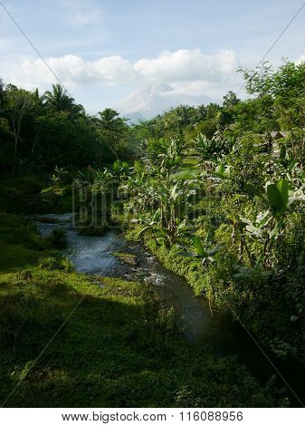 Mount Merapi and jungle on Java, Indonesia