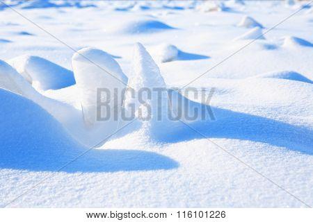 Snow Under Sun