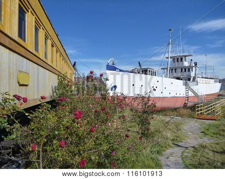 Train And Boat At The Lakeside Titicaca In Roses