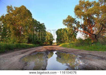 Summer Landscape With The Road After Rain
