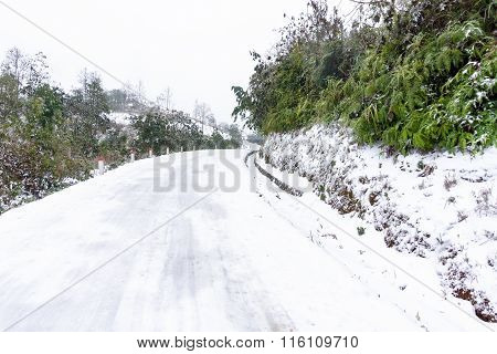 snow coveredroad y Ty, Vietnam