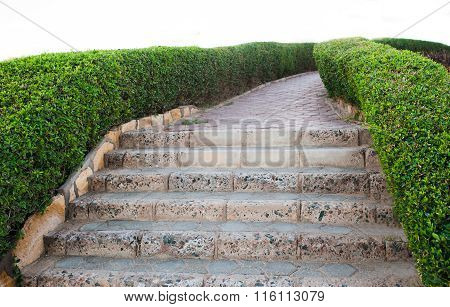 Track Walks And Stone Steps Leading Down