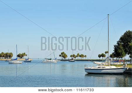 Sailboats in a cove