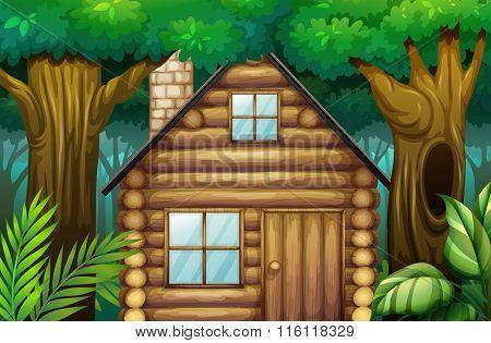 Little hut in the woods illustration