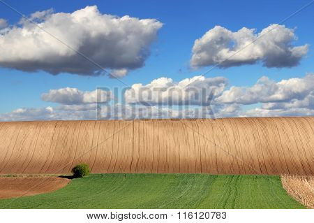 Farm land with blue sky