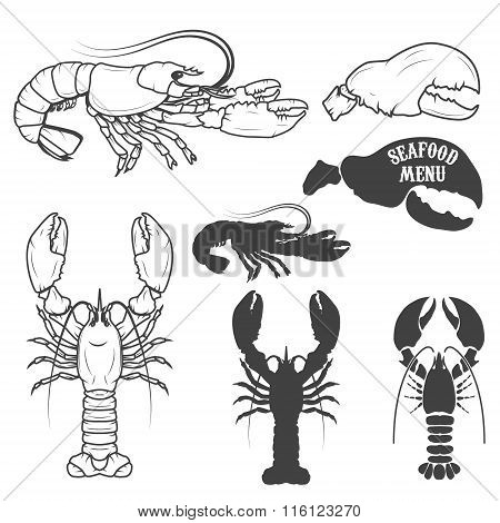 Set Of The Lobsters Illustrations In Vector.