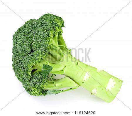 Fresh Juicy Green Broccoli Isolated