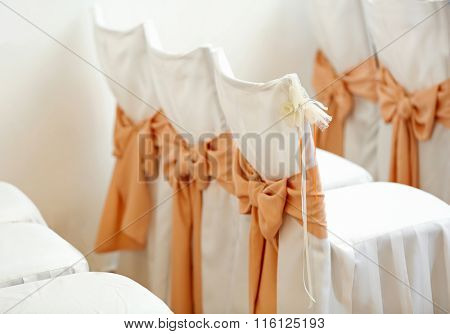 Seats for guests on a wedding ceremony/ Back view