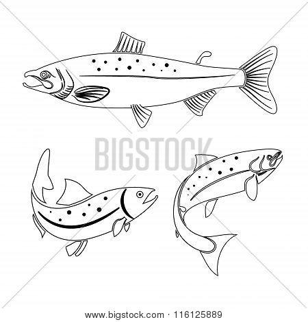 Salmon Label Design Element