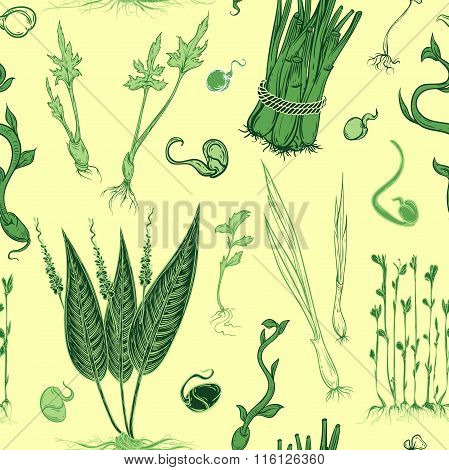 Seamless pattern with fresh sprouts plants set. Vector hand drawn illustration