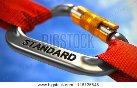 Chrome Carabiner Hook with Text Standard.