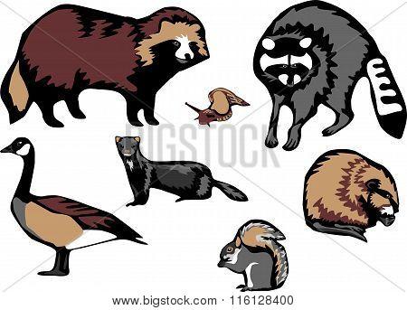 European invasive species
