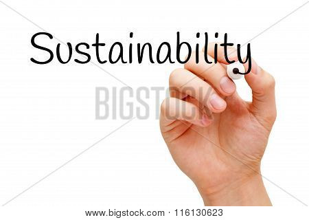 Sustainability Black Marker