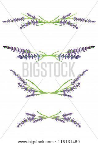 watercolor lavender branches, design elements, illustration