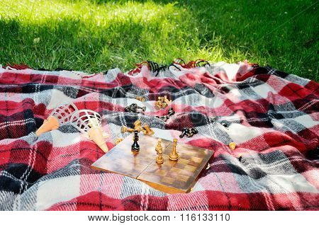 Chess On A Mat In The Park