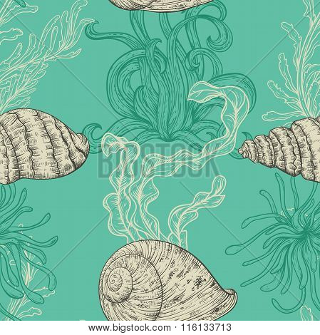 Seamless pattern with collection of sea shells, marine plants and seaweed. Vintage set of hand drawn