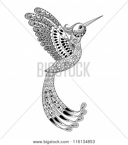 Zentangle hand drawn artistically Hummingbird