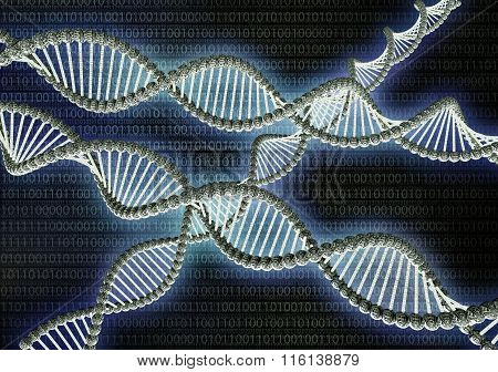 Dubble Helix Dna Made Out Of Binary Code