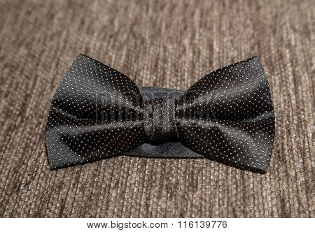Black bow tie with white spots