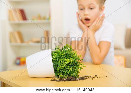 Broken flowerpot and surprised girl.