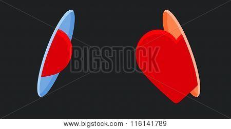 Heart passes through a portal