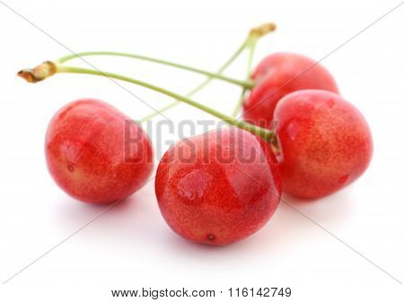 Four Sweet Cherries.