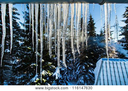 Winter or spring background with bright transparent icicles in the sunlight